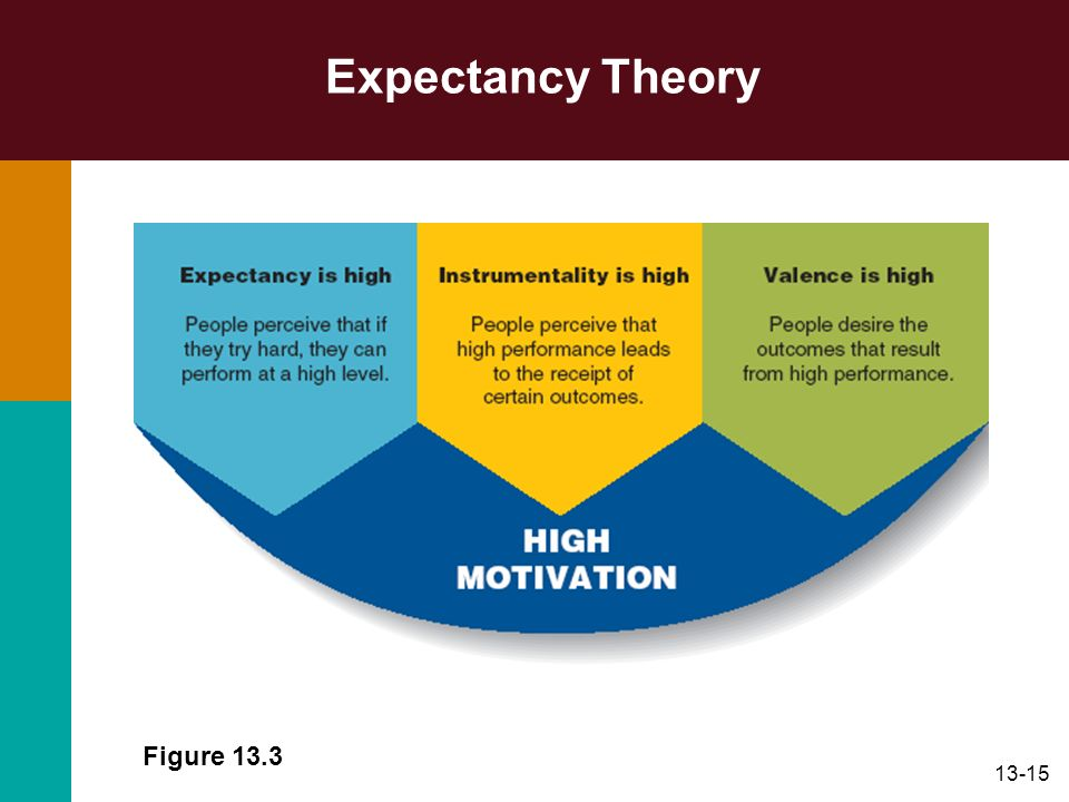 13-15 Expectancy Theory Figure 13.3