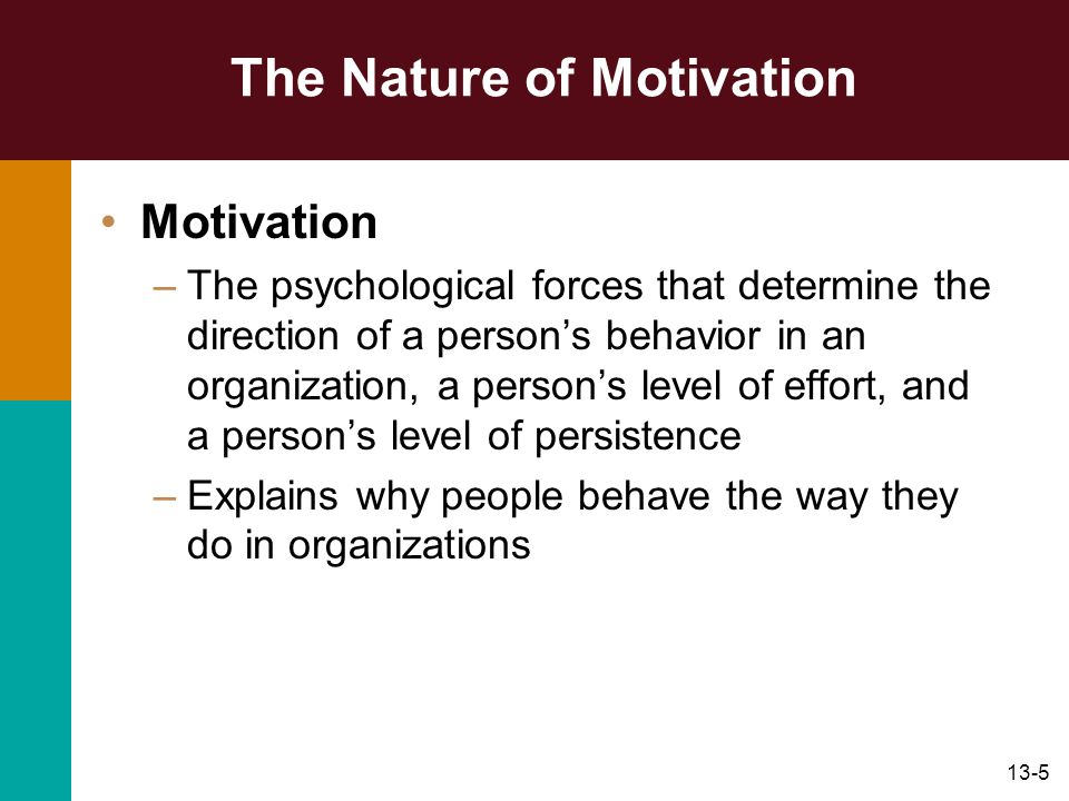 13-5 The Nature of Motivation Motivation –The psychological forces that determine the direction of a persons behavior in an organization, a persons le