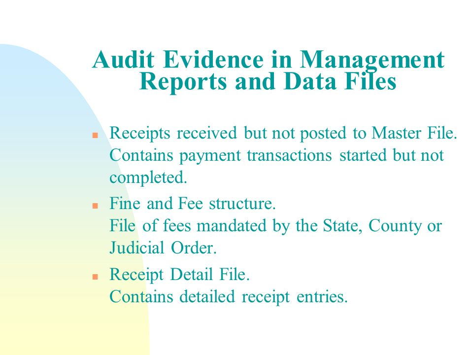 Audit Evidence in Management Reports and Data Files n Receipts received but not posted to Master File. Contains payment transactions started but not c