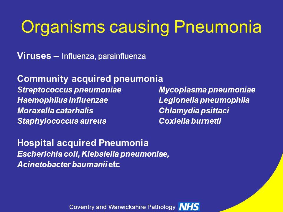Coventry and Warwickshire Pathology Organisms causing Pneumonia Viruses – Influenza, parainfluenza Community acquired pneumonia Streptococcus pneumoni