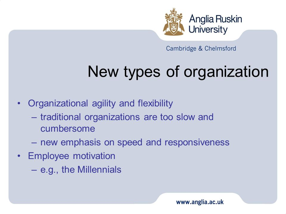 New types of organization Organizational agility and flexibility –traditional organizations are too slow and cumbersome –new emphasis on speed and res