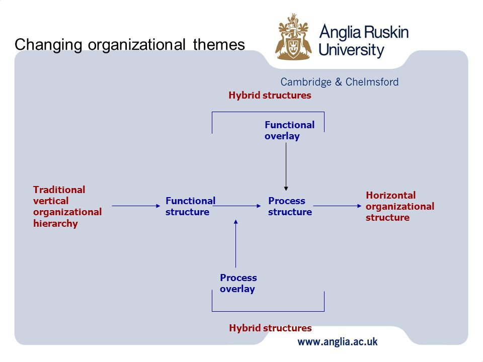 Changing organizational themes Traditional vertical organizational hierarchy Horizontal organizational structure Functional structure Process structur