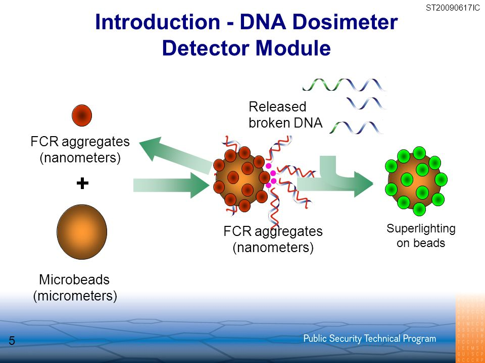FCR aggregates (nanometers) FCR aggregates (nanometers) Microbeads (micrometers) Released broken DNA Superlighting on beads ST20090617IC 5