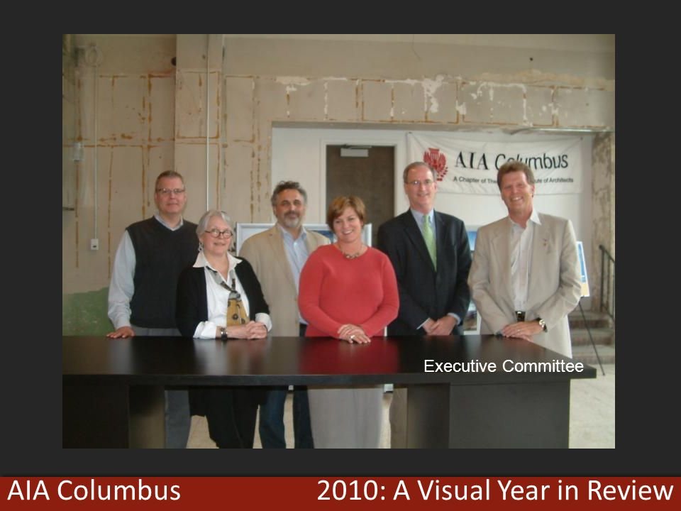 2010: A Visual Year in ReviewAIA Columbus Executive Committee
