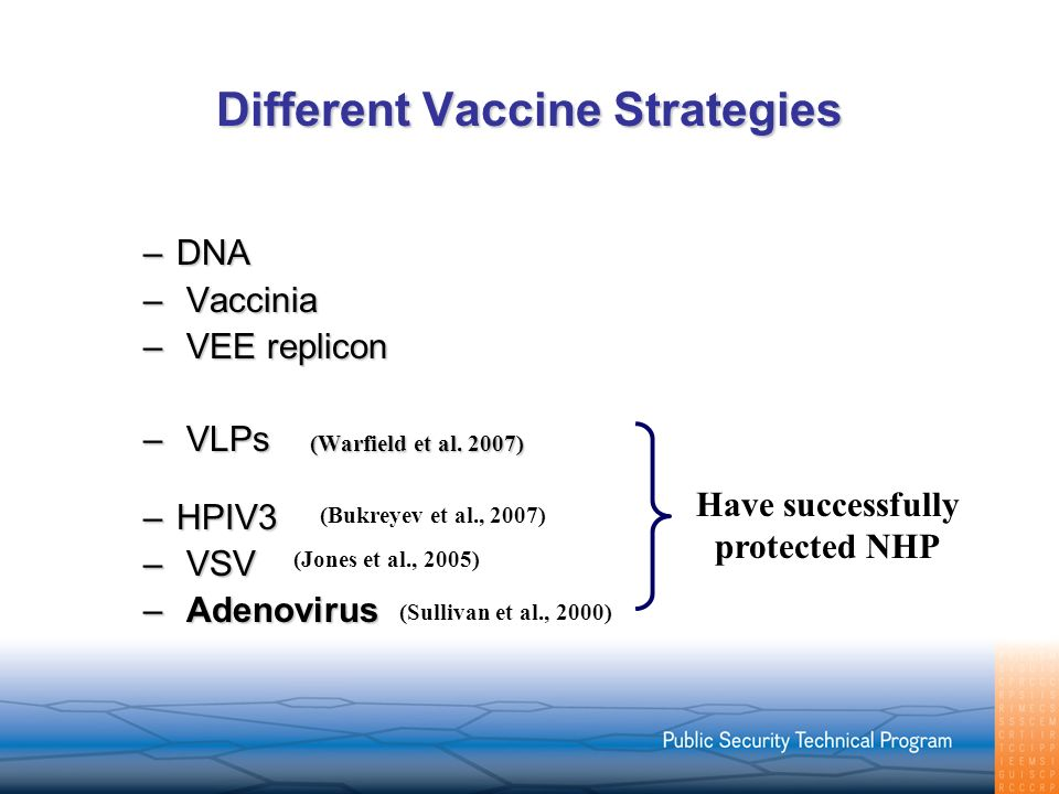 Different Vaccine Strategies –DNA – Vaccinia – VEE replicon – VLPs (Warfield et al. 2007) –HPIV3 – VSV – Adenovirus Have successfully protected NHP (B