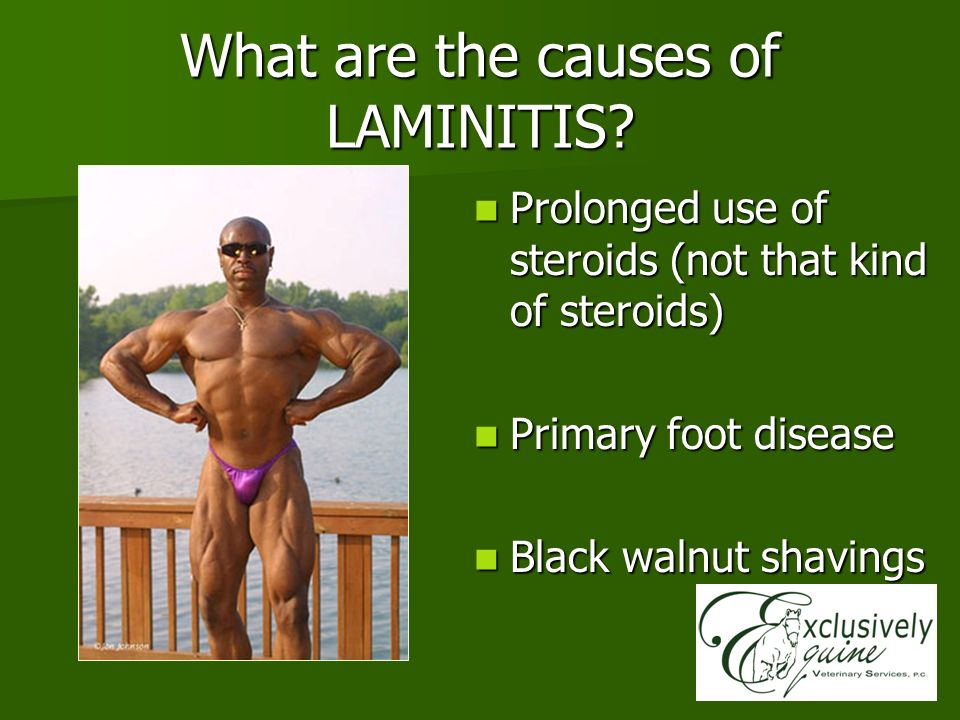 What are the causes of LAMINITIS? Prolonged use of steroids (not that kind of steroids) Prolonged use of steroids (not that kind of steroids) Primary