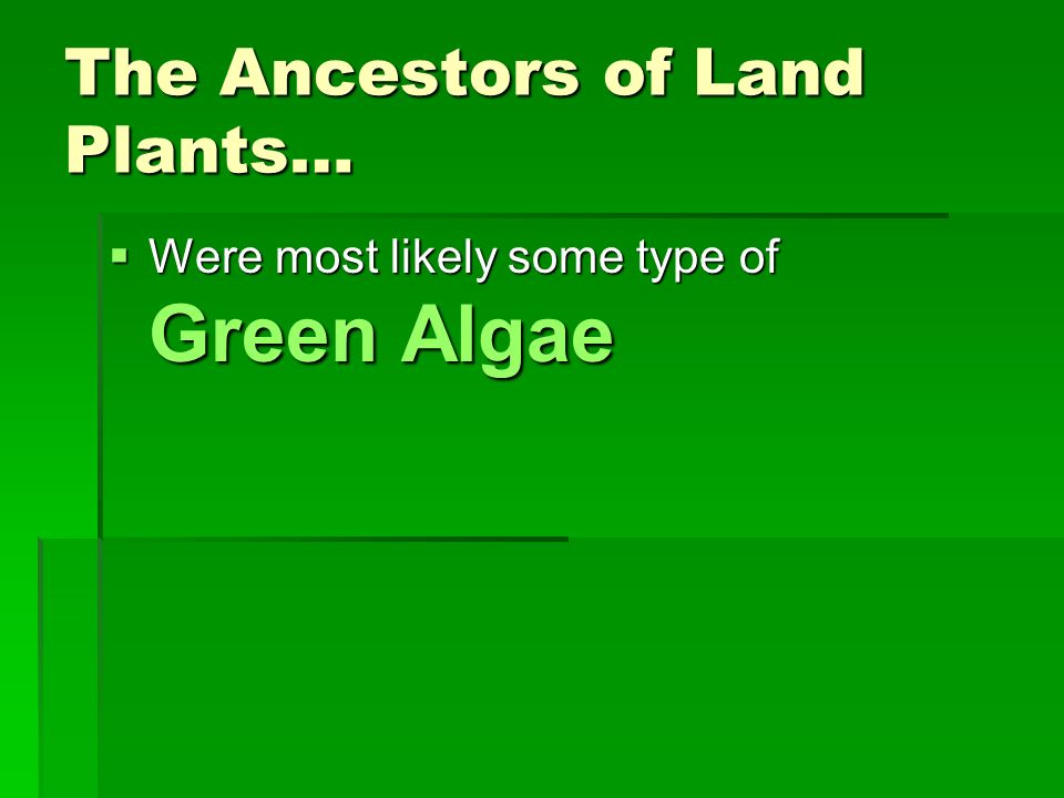 The Ancestors of Land Plants… Were most likely some type of Green Algae Were most likely some type of Green Algae