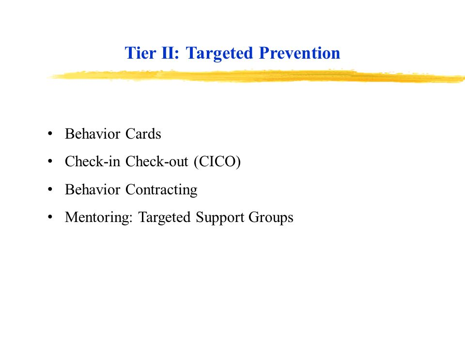 Behavior Cards Check-in Check-out (CICO) Behavior Contracting Mentoring: Targeted Support Groups Tier II: Targeted Prevention