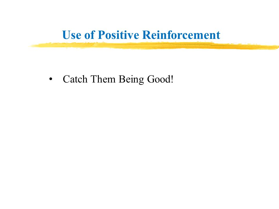Use of Positive Reinforcement Catch Them Being Good!