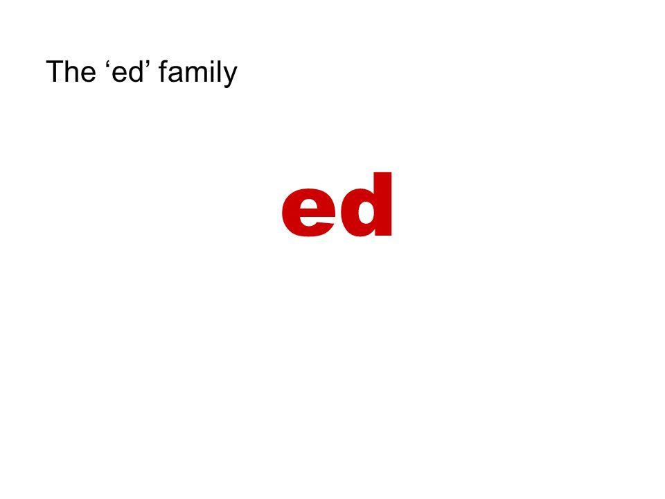 The ed family ed