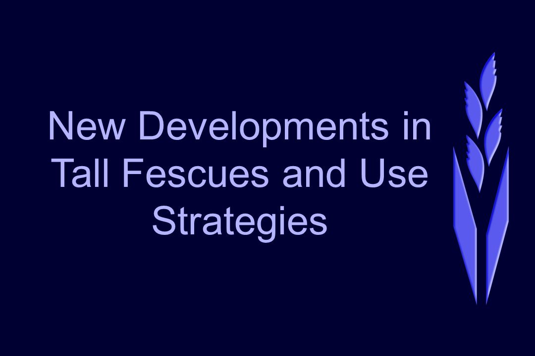 New Developments in Tall Fescues and Use Strategies