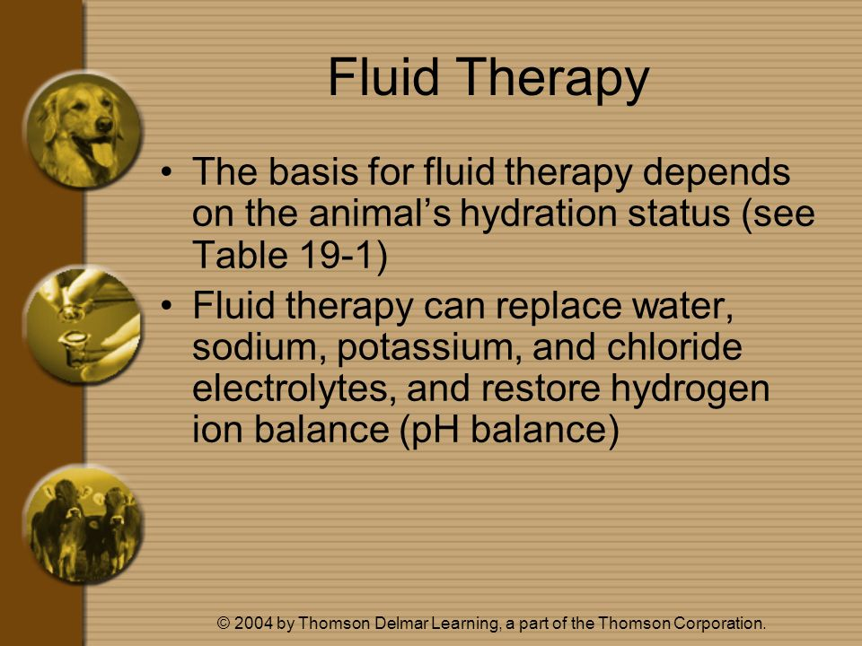 © 2004 by Thomson Delmar Learning, a part of the Thomson Corporation. Fluid Therapy The basis for fluid therapy depends on the animals hydration statu