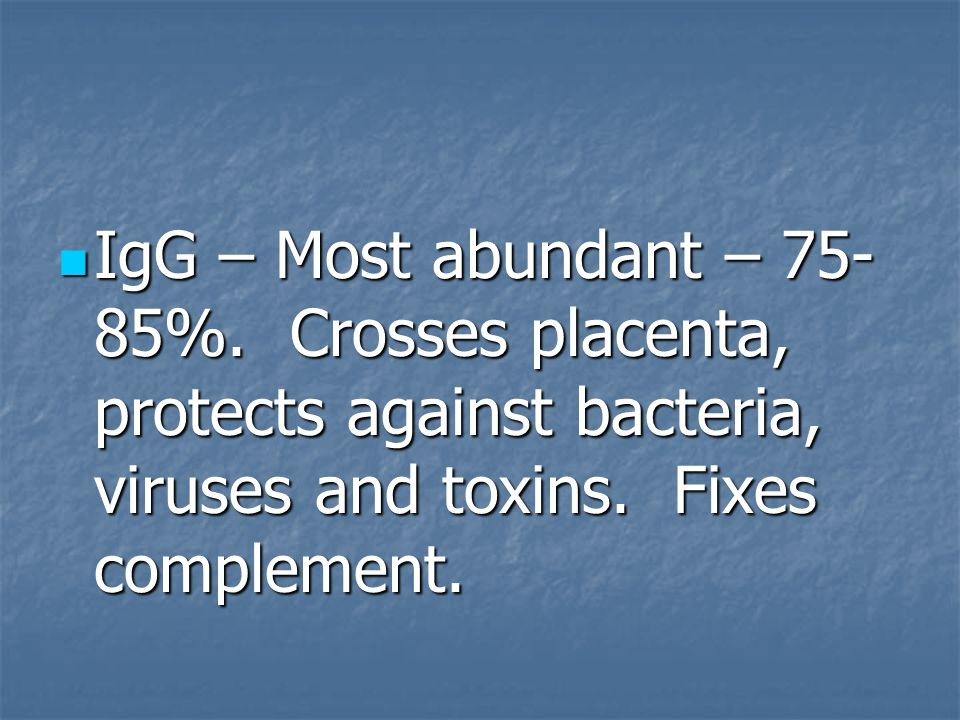 IgG – Most abundant – 75- 85%. Crosses placenta, protects against bacteria, viruses and toxins. Fixes complement. IgG – Most abundant – 75- 85%. Cross