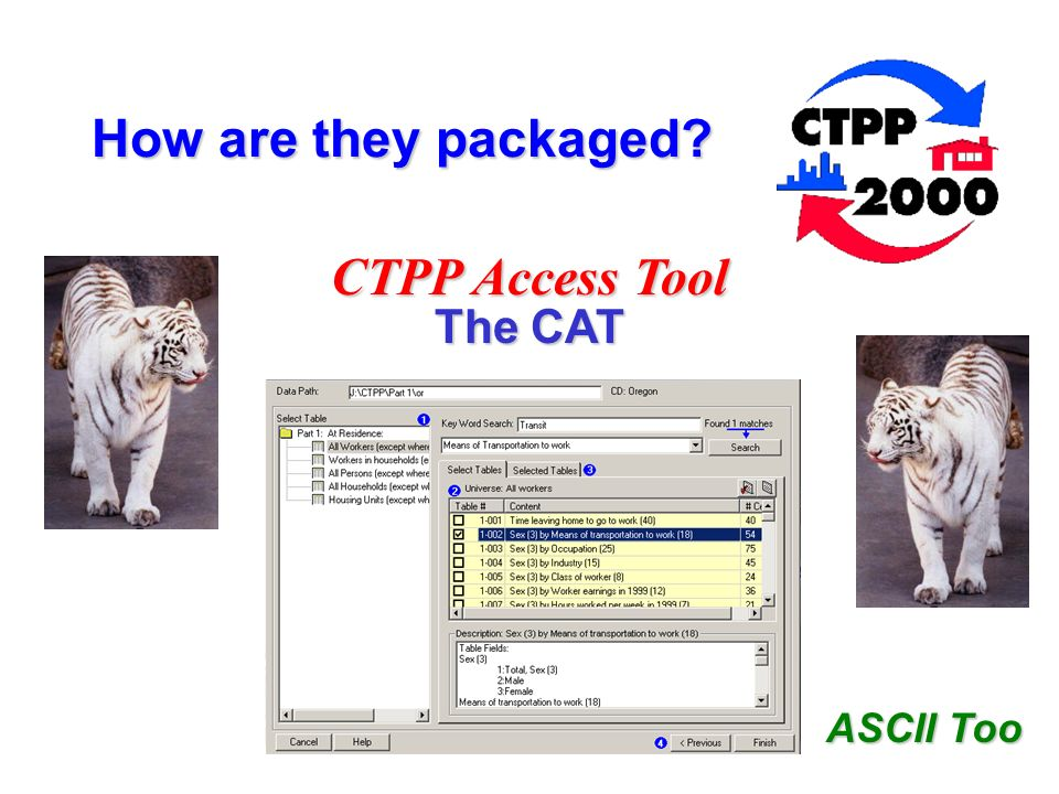 ASCII Too How are they packaged? CTPP Access Tool The CAT