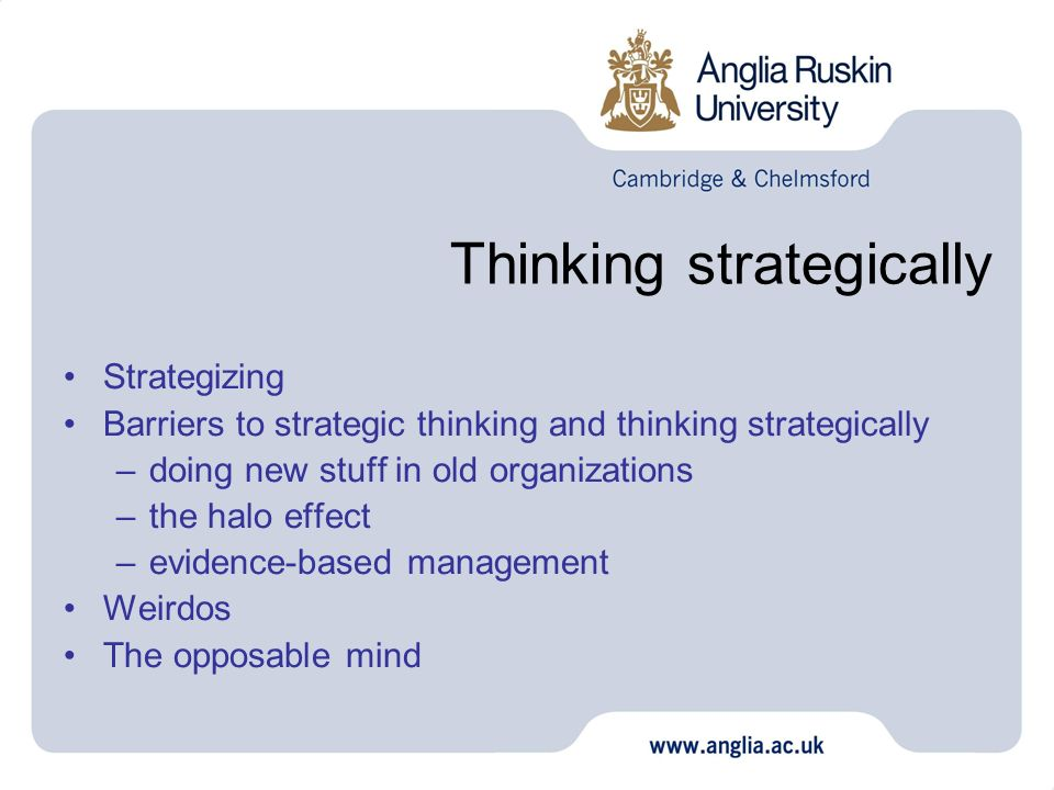 Thinking strategically Strategizing Barriers to strategic thinking and thinking strategically –doing new stuff in old organizations –the halo effect –