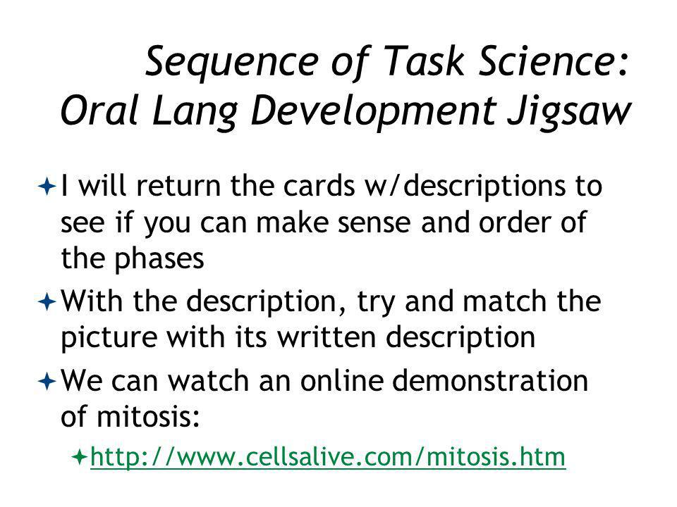 Sequence of Task Science: Oral Lang Development Jigsaw I will return the cards w/descriptions to see if you can make sense and order of the phases With the description, try and match the picture with its written description We can watch an online demonstration of mitosis: http://www.cellsalive.com/mitosis.htm