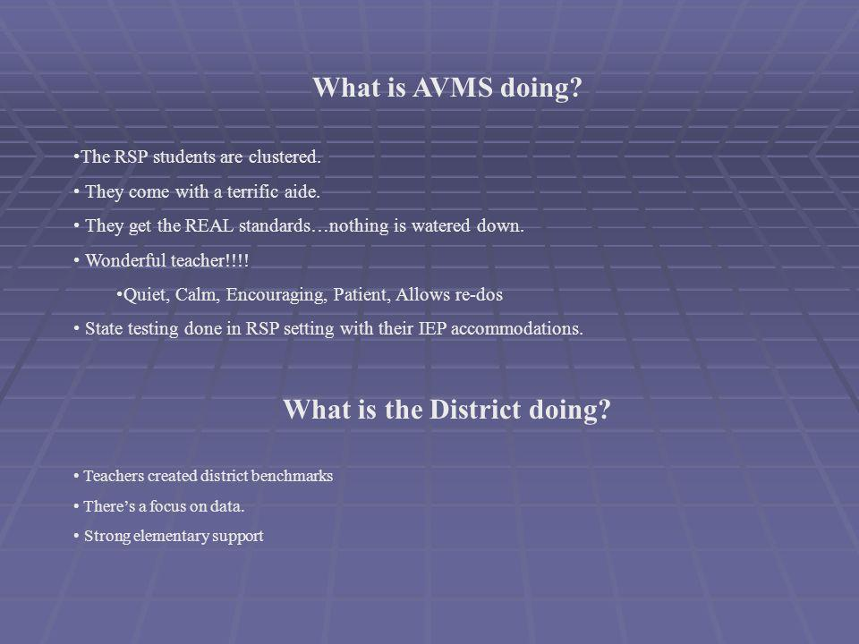 What is AVMS doing. The RSP students are clustered.