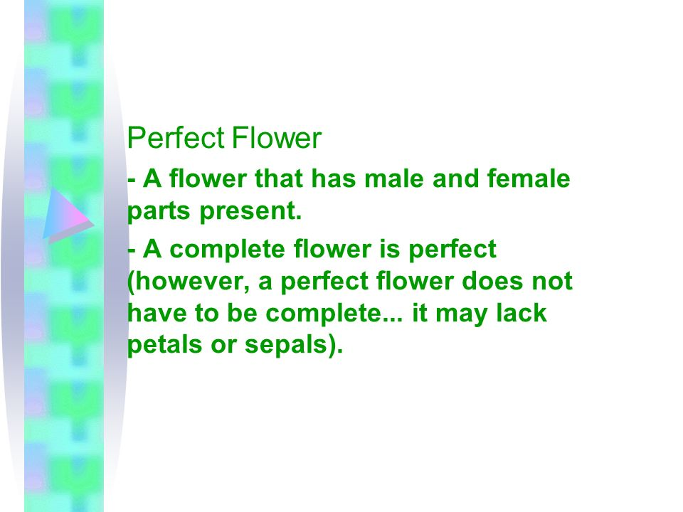 Perfect Flower - A flower that has male and female parts present. - A complete flower is perfect (however, a perfect flower does not have to be comple