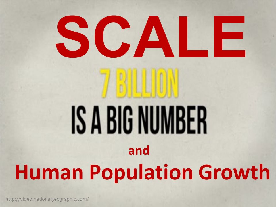 http://video.nationalgeographic.com/ and Human Population Growth SCALE