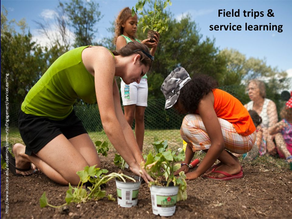 http://www.lccc.wy.edu/academics/communityEngagement/serviceLearning Field trips & service learning