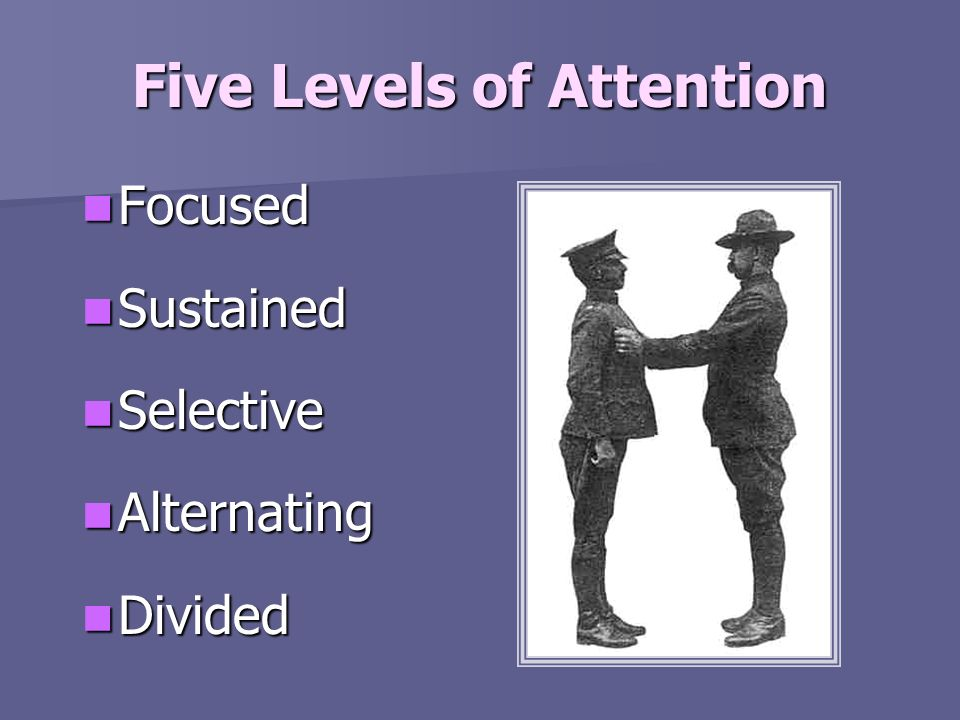 Five Levels of Attention Focused Focused Sustained Sustained Selective Selective Alternating Alternating Divided Divided
