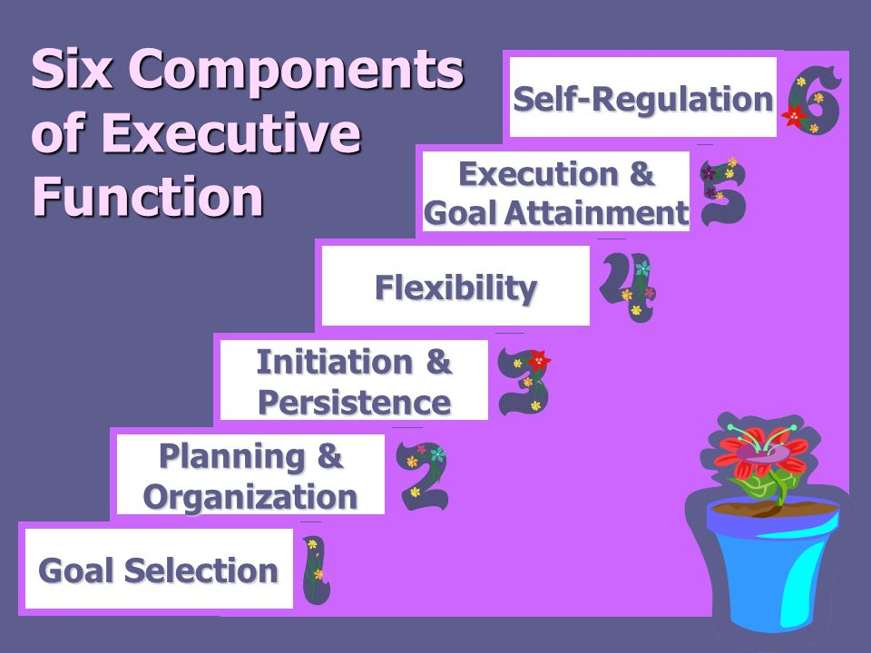 Six Components of Executive Function Goal Selection Planning & Organization Initiation & Persistence Flexibility Execution & Goal Attainment Self-Regu