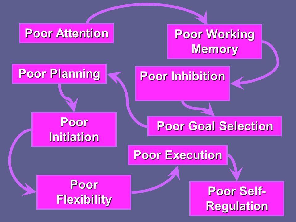 Poor Attention Poor Working Memory Poor Inhibition Poor Goal Selection Poor Planning Poor Initiation Poor Flexibility Poor Execution Poor Self- Regula