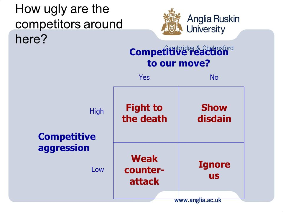 How ugly are the competitors around here? Competitive reaction to our move? Competitive aggression YesNo High Low Fight to the death Show disdain Weak