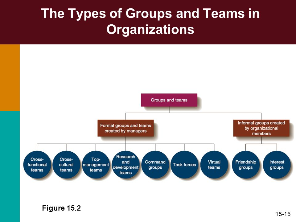 15-15 The Types of Groups and Teams in Organizations Figure 15.2