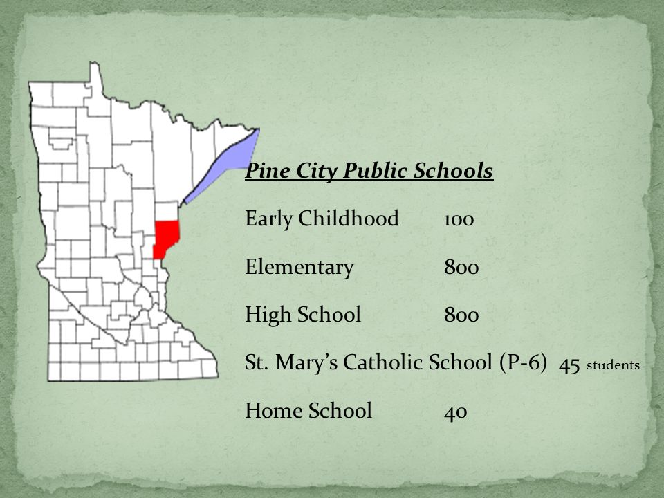 Pine City Public Schools Early Childhood100 Elementary800 High School800 St. Marys Catholic School (P-6) 45 students Home School 40