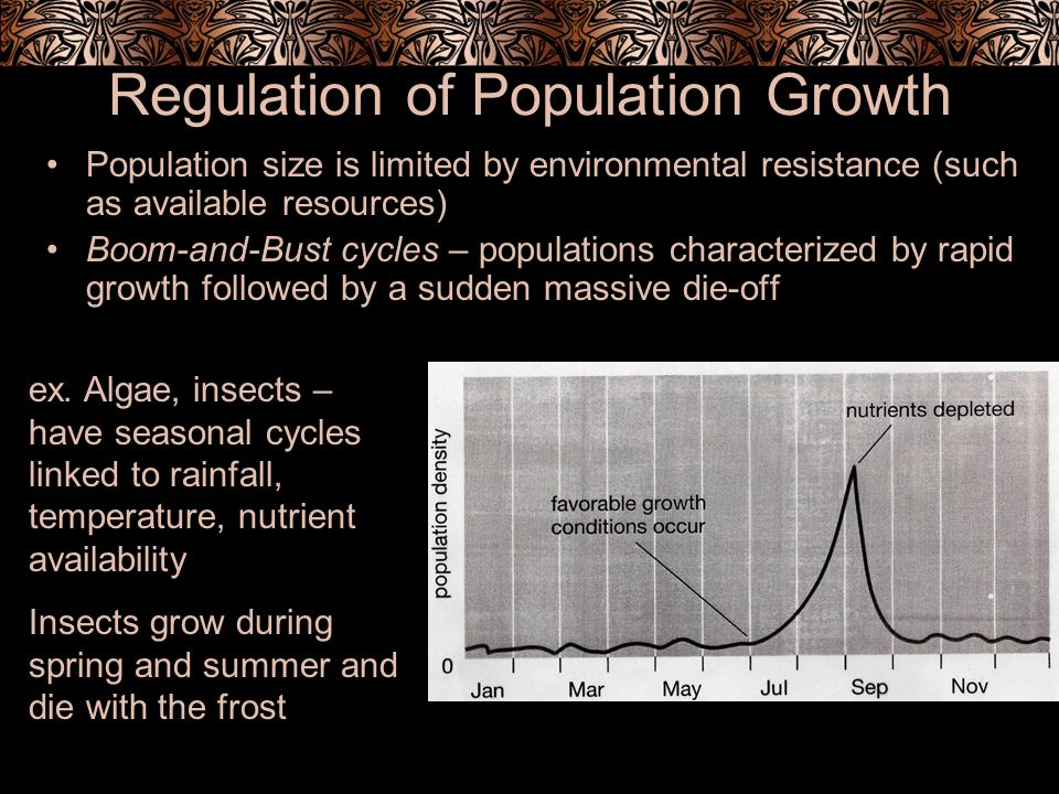 Regulation of Population Growth Population size is limited by environmental resistance (such as available resources) Boom-and-Bust cycles – population