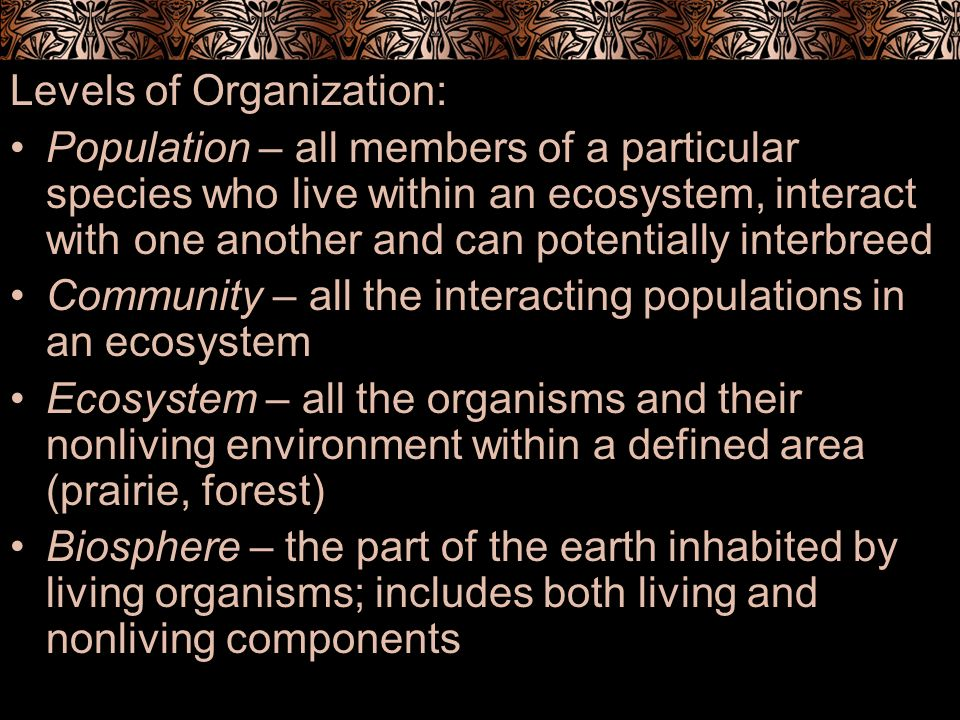 Levels of Organization: Population – all members of a particular species who live within an ecosystem, interact with one another and can potentially i