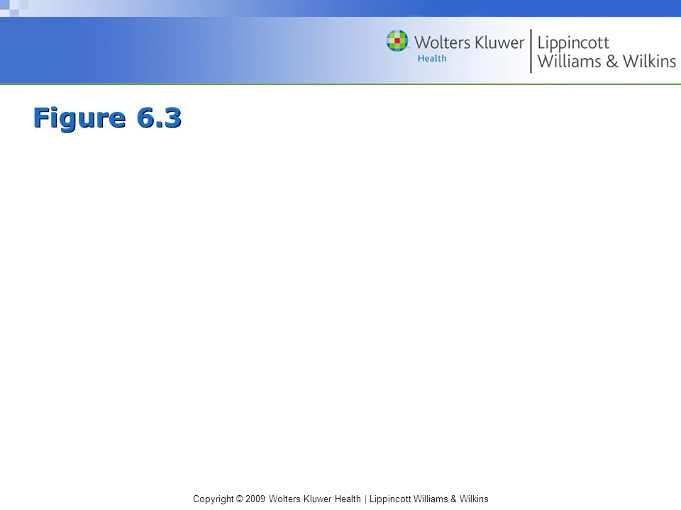 Copyright © 2009 Wolters Kluwer Health | Lippincott Williams & Wilkins Figure 6.3