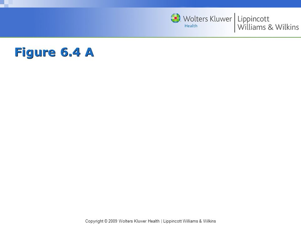 Copyright © 2009 Wolters Kluwer Health | Lippincott Williams & Wilkins Figure 6.4 A