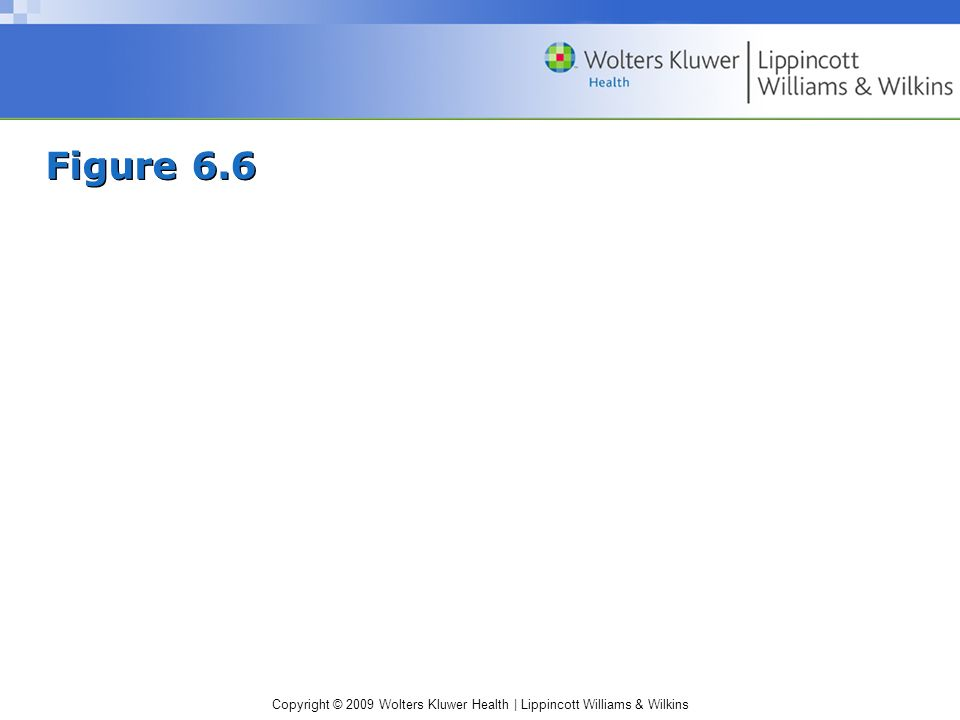 Copyright © 2009 Wolters Kluwer Health | Lippincott Williams & Wilkins Figure 6.6