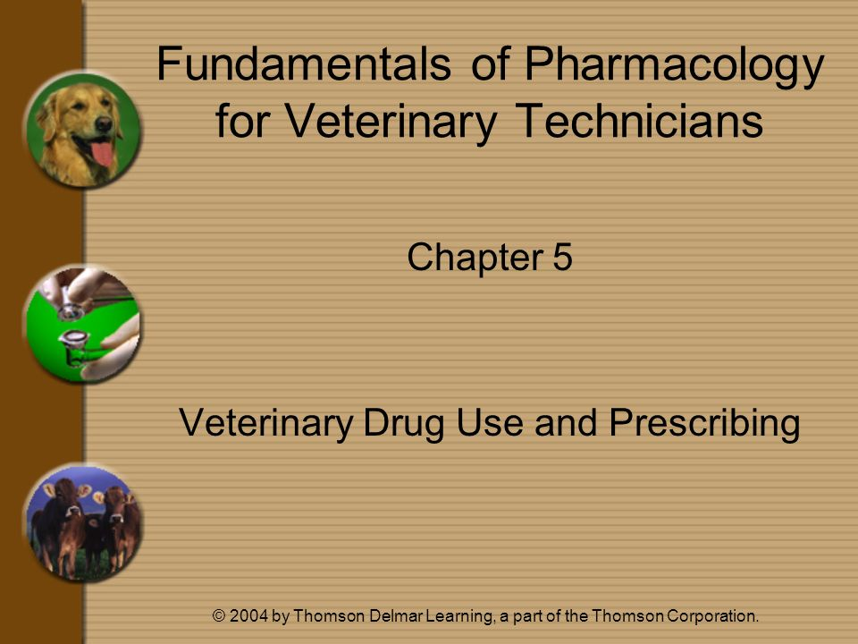 © 2004 by Thomson Delmar Learning, a part of the Thomson Corporation. Fundamentals of Pharmacology for Veterinary Technicians Chapter 5 Veterinary Dru