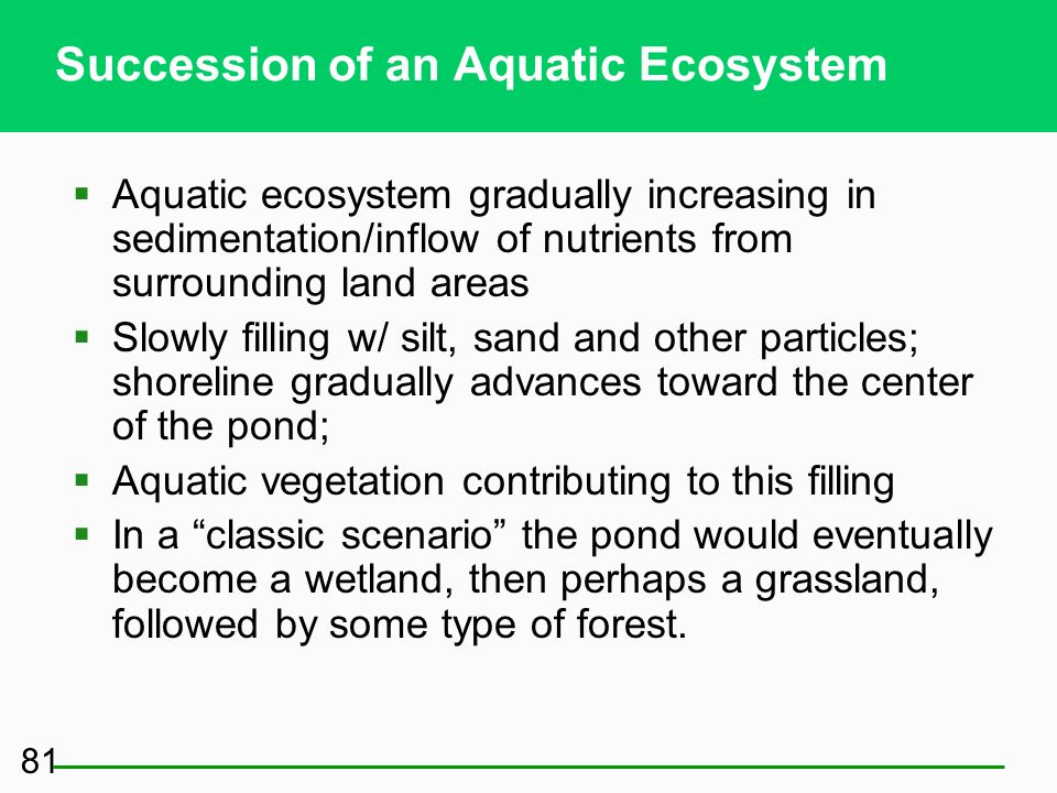 Some Ecosystems Do Not Have to Start from Scratch: Secondary Succession (2) Primary and secondary succession Tend to increase biodiversity Increase sp