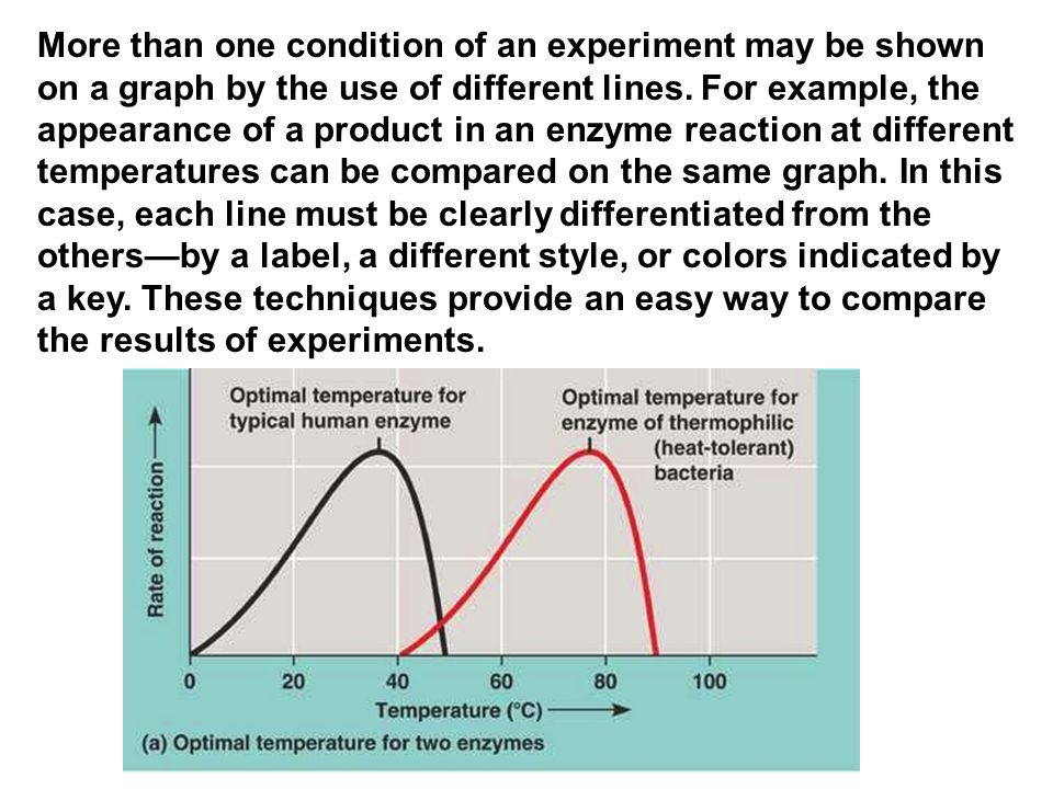 More than one condition of an experiment may be shown on a graph by the use of different lines. For example, the appearance of a product in an enzyme