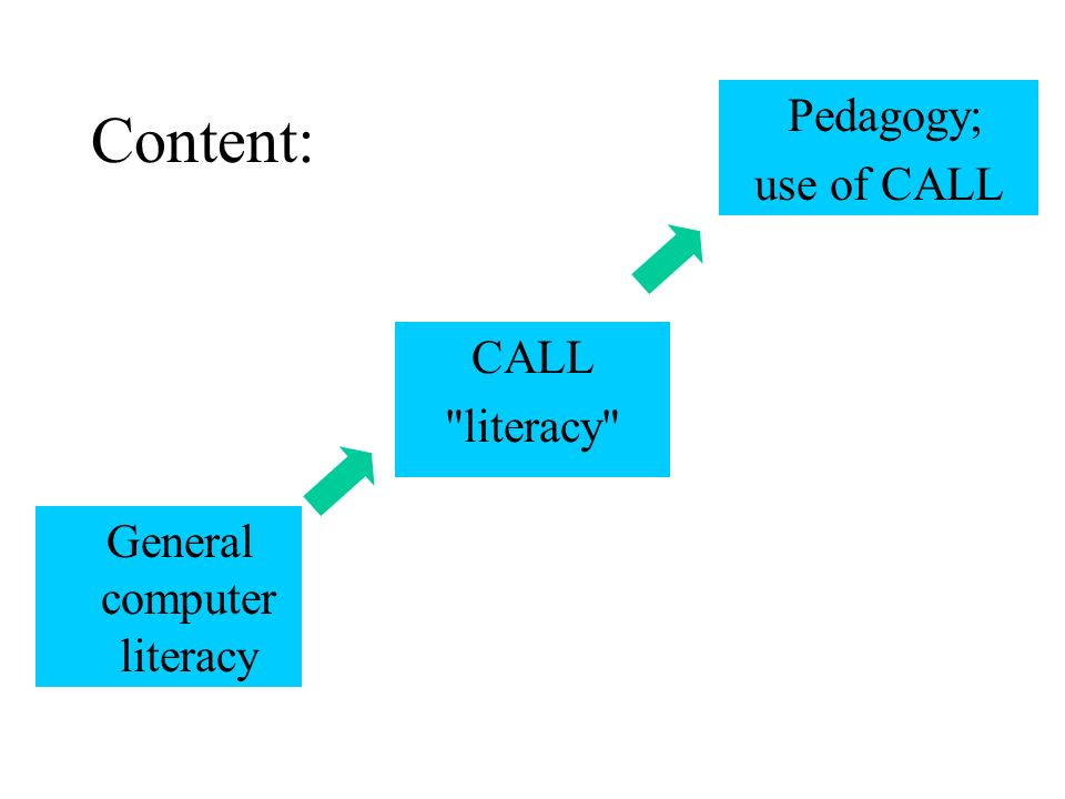 CALL literacy Pedagogy; use of CALL General computer literacy