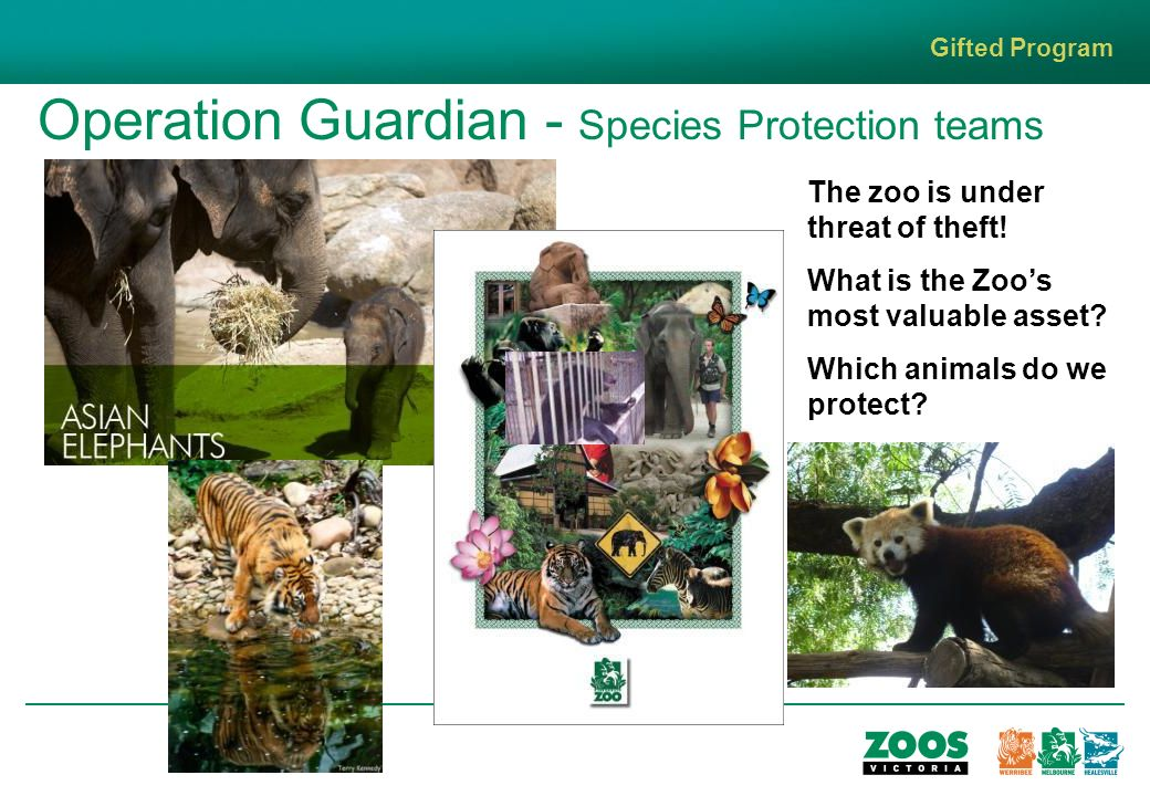 Operation Guardian - Species Protection teams Gifted Program The zoo is under threat of theft.