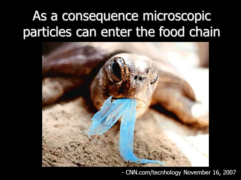 As a consequence microscopic particles can enter the food chain - CNN.com/tecnhology November 16, 2007