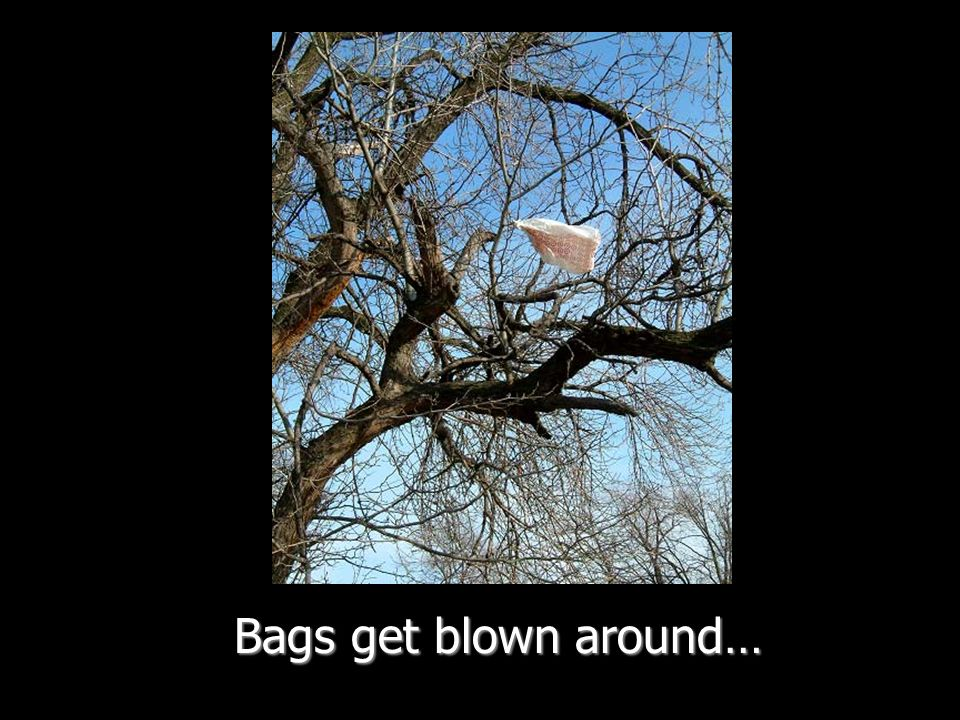 Bags get blown around…