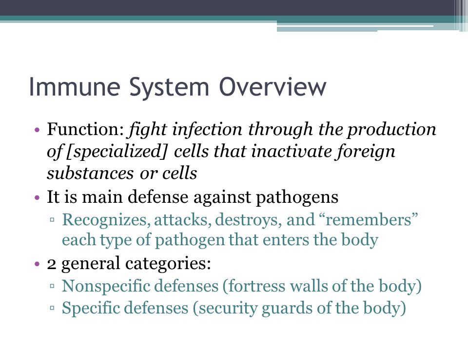 Immune System Overview Function: fight infection through the production of [specialized] cells that inactivate foreign substances or cells It is main