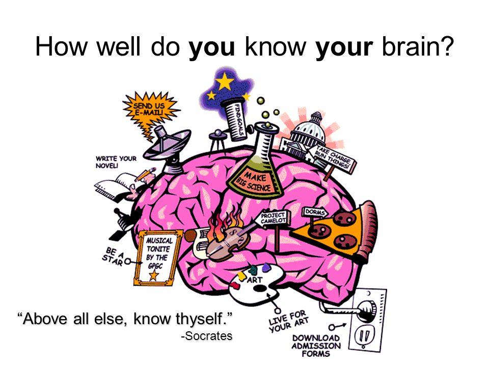 Brain-ology