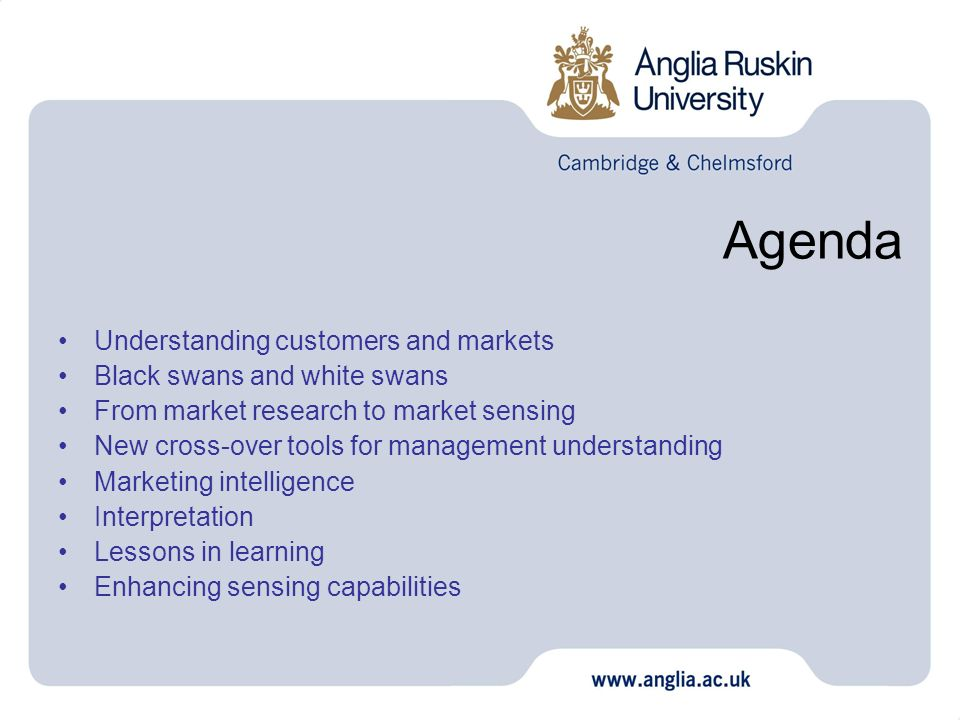 Agenda Understanding customers and markets Black swans and white swans From market research to market sensing New cross-over tools for management unde