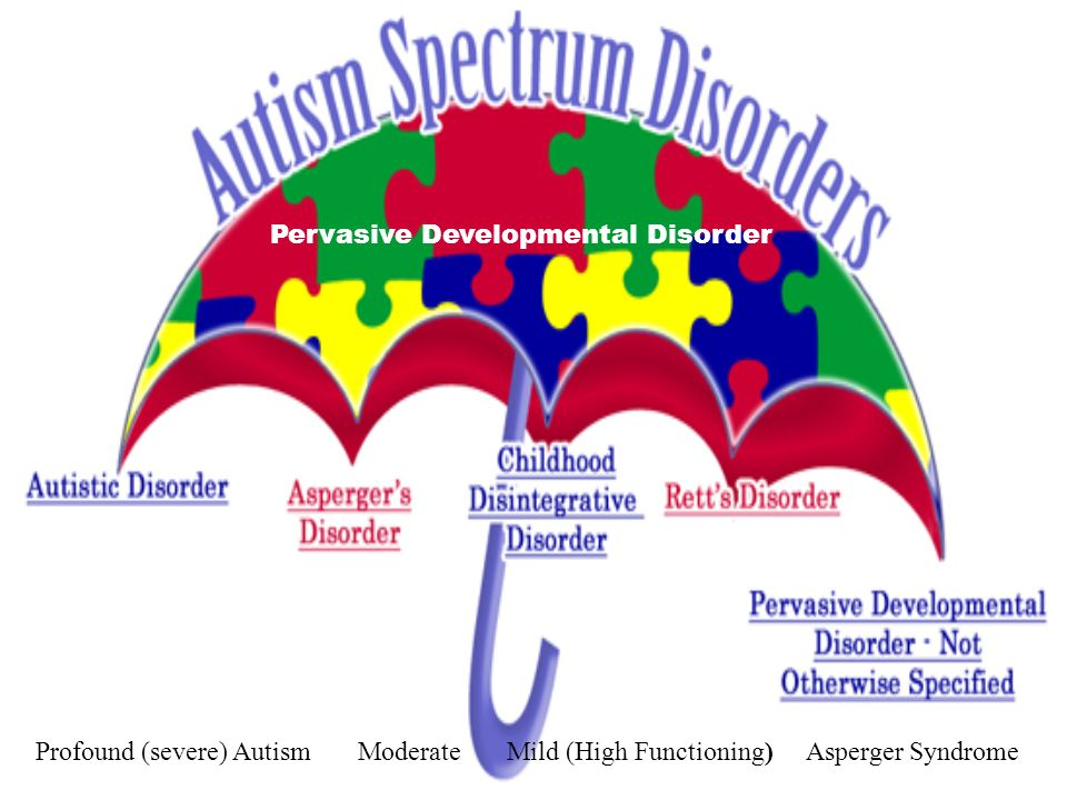 Profound (severe) Autism Moderate Mild (High Functioning) Asperger Syndrome Pervasive Developmental Disorder