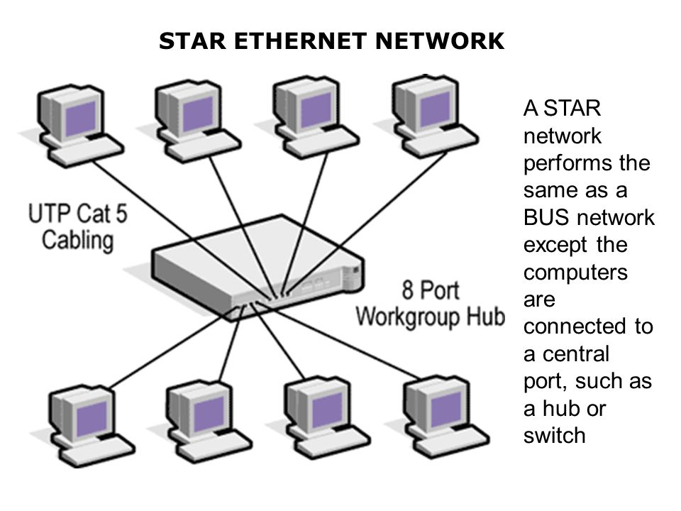 STAR ETHERNET NETWORK A STAR network performs the same as a BUS network except the computers are connected to a central port, such as a hub or switch