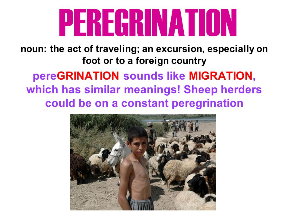 PEREGRINATION noun: the act of traveling; an excursion, especially on foot or to a foreign country pereGRINATION sounds like MIGRATION, which has similar meanings.