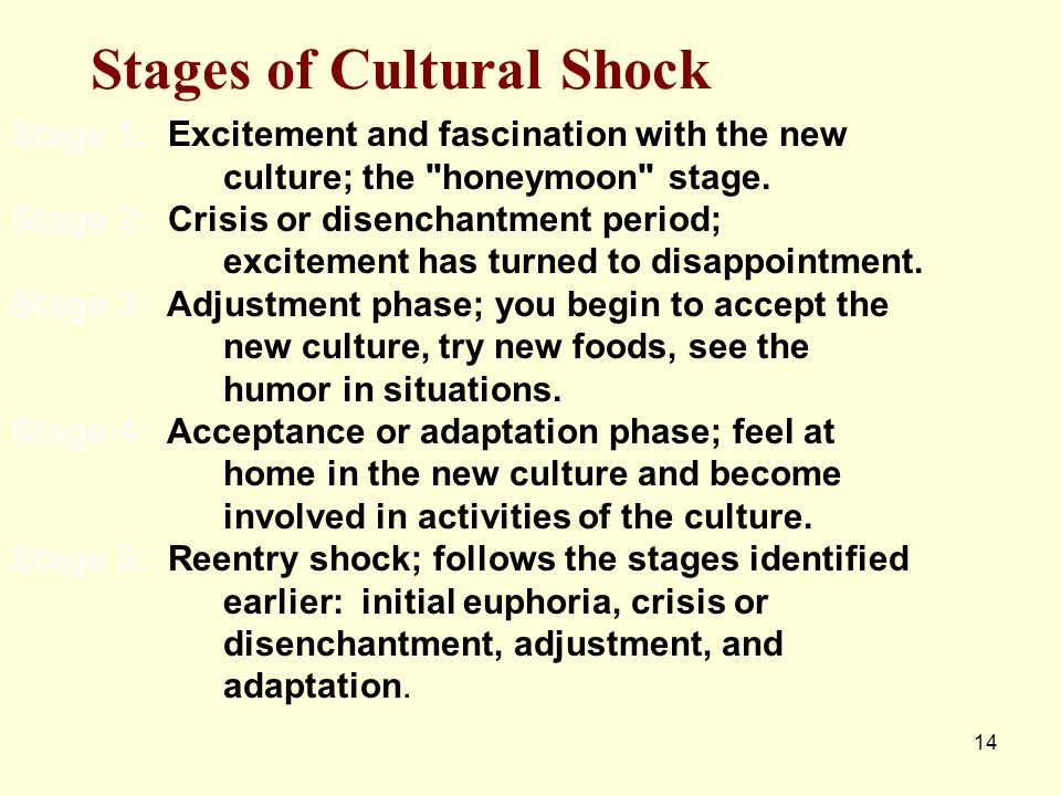 14 Stages of Cultural Shock Stage 1: Excitement and fascination with the new culture; the