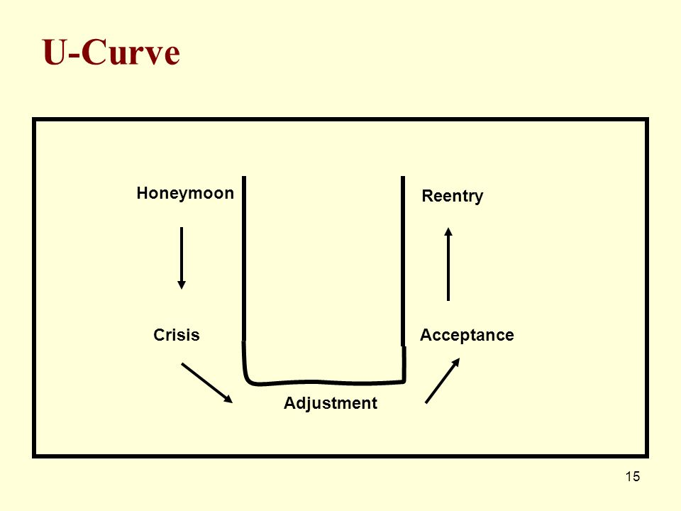 15 U-Curve Honeymoon Crisis Adjustment Acceptance Reentry
